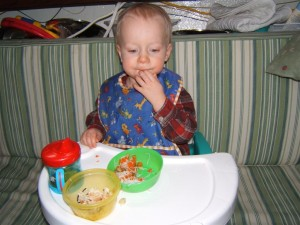 Booster Chair for Feeding